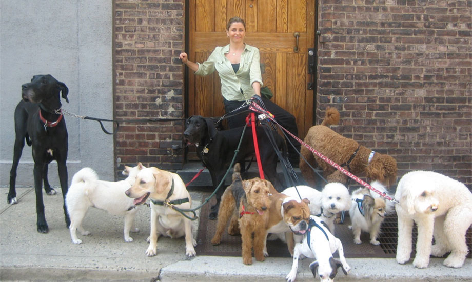 Kate Perry Trains Dogs